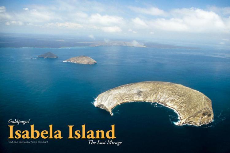 gal pagos isabela island   the last mirage x ray mag