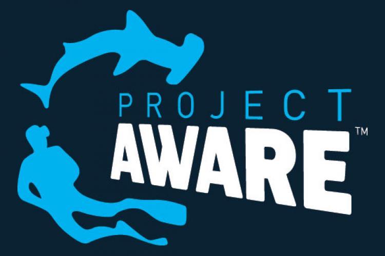 Project AWARE, annual report, Rosemary E Lunn, Roz Lunn, X-Ray Mag, XRay Magazine, environment, dive for debris