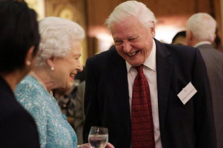 Queen Elizabeth, David Attenborough, plastic straws, royal households, recycling, Rosemary E Lunn, Roz Lunn, X-Ray Mag, XRay Magazine,