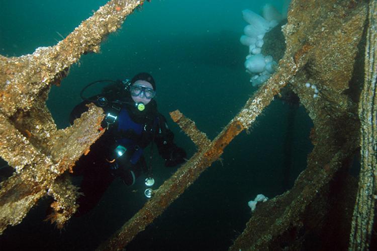 British Columbia's Wreck Trek | X-Ray Mag