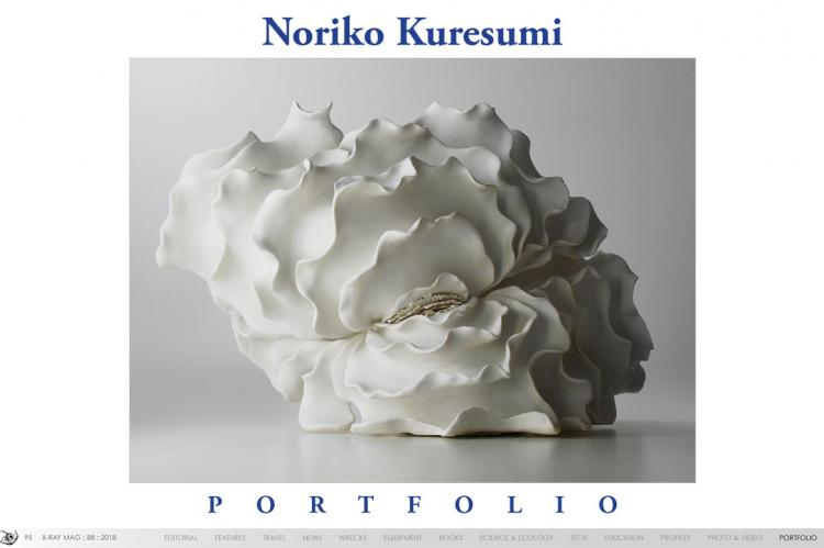 Noriko Kuresumi Portfolio | X-Ray Mag