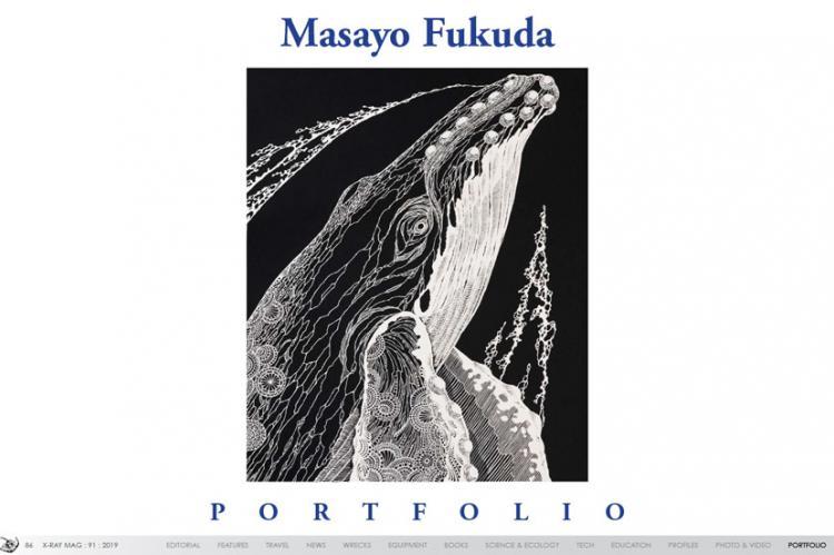 Masayo Fukuda Portfolio | X-Ray Mag