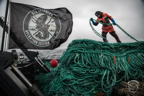 Sea Shepherd UK, SDI, Scuba Diving International, Mark Powell, Ghostnet Recovery Course, Ghost Fishing, Ghostfishing, Rosemary E Lunn, Roz Lunn, X-Ray Mag, XRay Magazine, scuba diving news