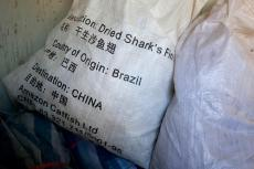 A bag of shark fins in China shows that it contains the fins of Brazil's sharks
