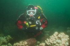 Caroline Sampson, Martin Sampson, Anglesey Divers, Rosemary Lunn, Roz Lunn, XRay Magazine, X-Ray Mag, SITA, scuba diving news, Anglesey, North Wales Diving