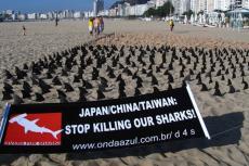 Japan/China/Taiwan : Stop killing our sharks!