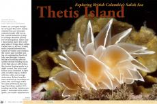 Article: Thetis Island, with text by Barb Roy and photos by Barb Roy and Andy Lamb, X-Ray Mag issue #26