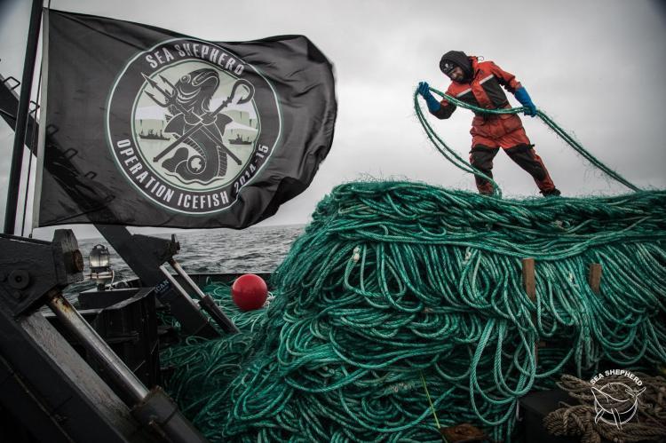 Sea Shepherd UK, SDI, Scuba Diving International, Mark Powell, Ghostnet Recovery Course, Ghost Fishing, Ghostfishing, Rosemary E Lunn, Roz Lunn, X-Ray Mag, XRay Magazine, scuba diving news