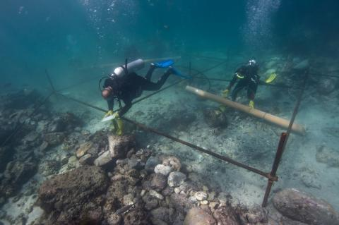 Portuguese ship wrecked on a remote island in the Sultanate of Oman in 1503 is the earliest ship of discovery to be found and scientifically investigated by archaeologists