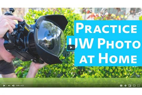 Practice underwater photography at home, with free video tutorials by Brent Durand.