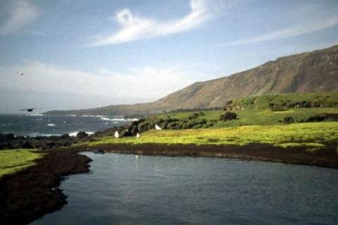 Marion Island