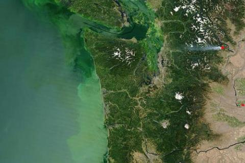 muddy green cloud floats in the Pacific Ocean off the coast of Washington and Oregon in this Moderate Resolution Imaging Spectroradiometer (MODIS) image, taken on July 23, 2004, by the Terra satellite.