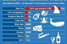 Shark Fins Petition, UK Parliament, Robin Gallagher, New York Times, Bobby L. Christine, environment, Rosemary E Lunn, Roz Lunn, X-Ray Mag, XRay Magazine, scuba diving news, Bite-Back