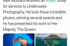 Alex Mustard, underwater photographer, MBE, Rosemary E Lunn, Roz Lunn, X-Ray Mag, XRay Magazine, scuba diving news